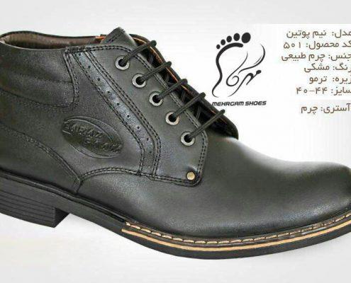 شرکت تولیدی کفش چرم مردانه
